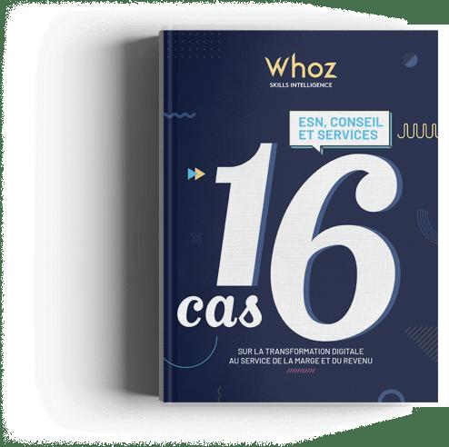 livre blanc 16 cas